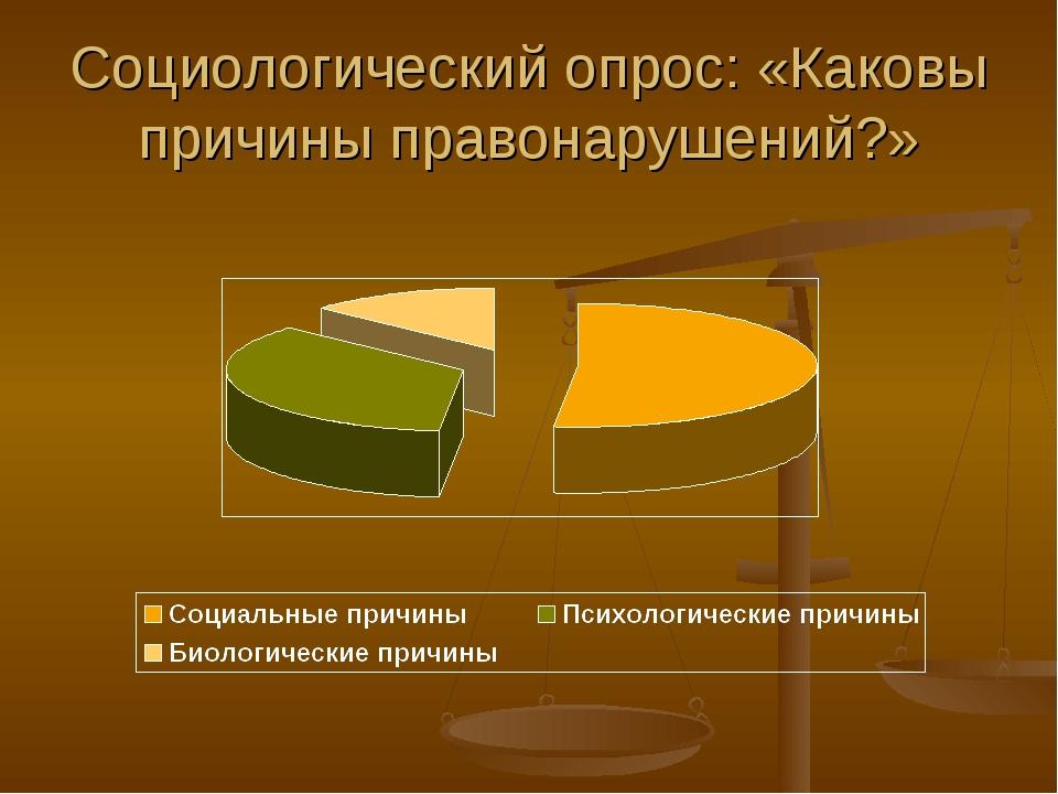 Социологический опрос: «Каковы причины правонарушений?»