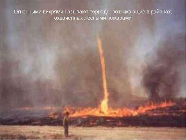 Огненными вихрями называют торнадо, возникающие в районах, охваченных лесными...