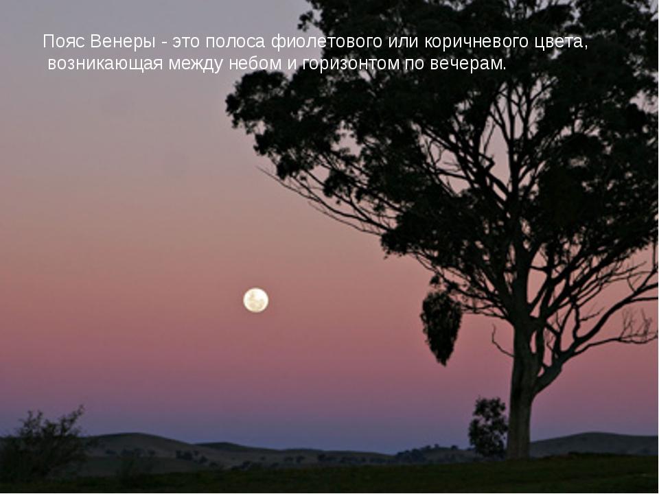 Пояс Венеры - это полоса фиолетового или коричневого цвета, возникающая между...