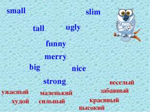 strong slim small tall big funny merry nice ugly сильный худой маленький высо