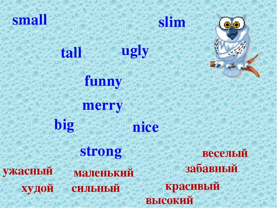 strong slim small tall big funny merry nice ugly сильный худой маленький высо...