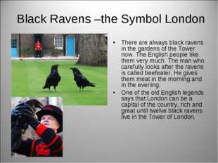 Black Ravens –the Symbol London There are always black ravens in the gardens