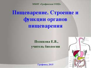 Пищеварение. Строение и функции органов пищеварения Полякова Е.В., учитель би
