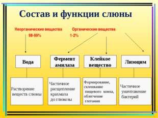 Состав и функции слюны Неорганические вещества Органические вещества 98-99%