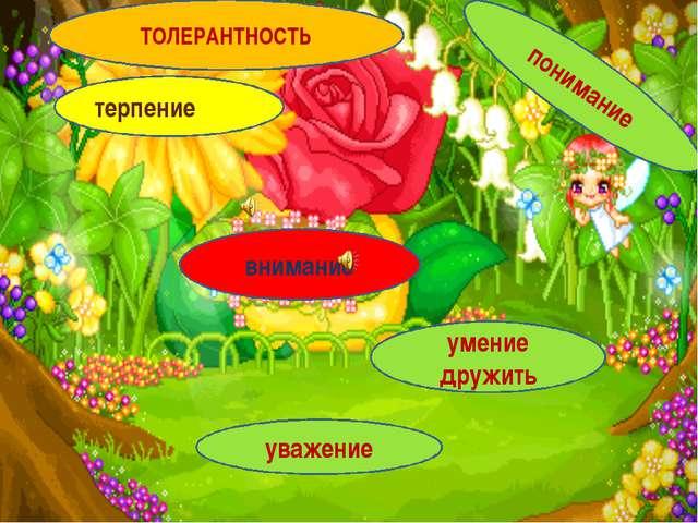 Веселая полянка терпение внимание умение дружить уважение понимание ТОЛЕРАНТН...