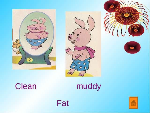 Clean muddy Fat
