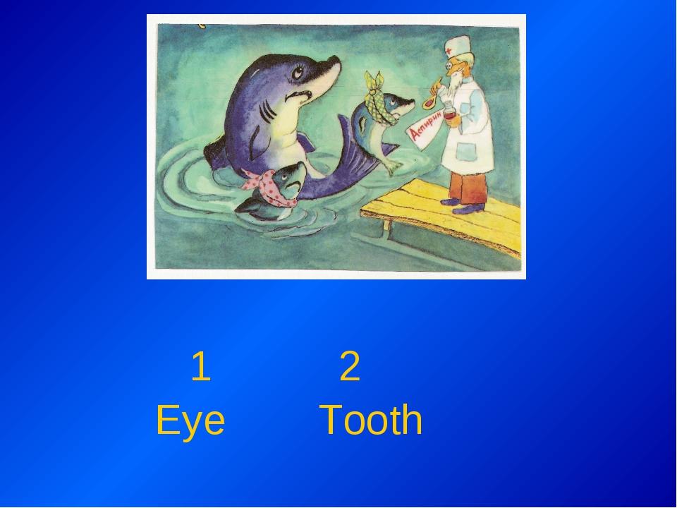 1 2 Eye Tooth