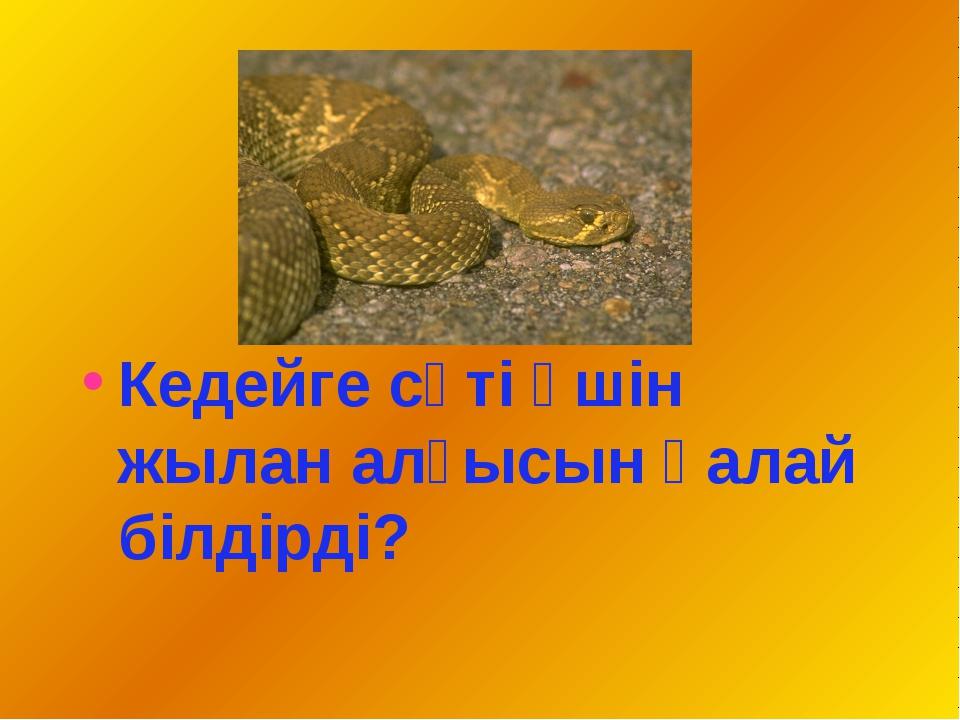 Кедейге сүті үшін жылан алғысын қалай білдірді?