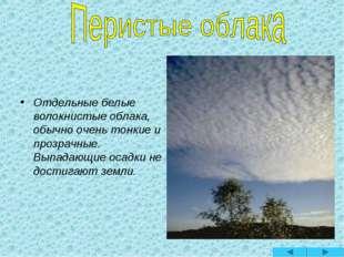 Отдельные белые волокнистые облака, обычно очень тонкие и прозрачные. Выпада