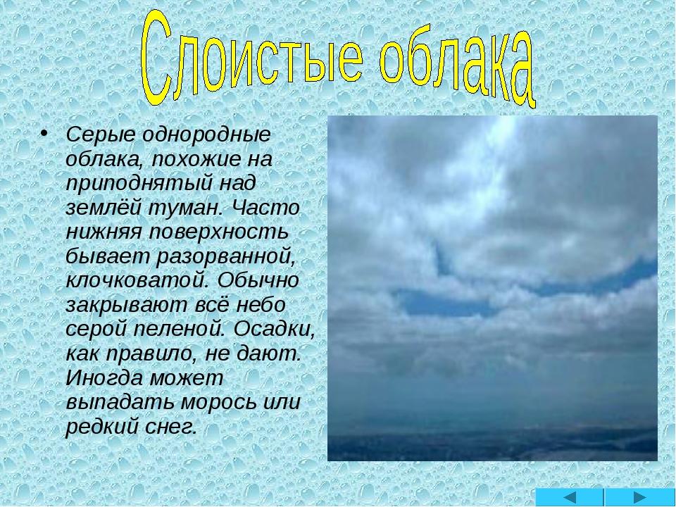 Серые однородные облака, похожие на приподнятый над землёй туман. Часто нижня...