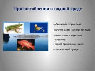 Приспособления к водной среде - обтекаемая форма тела; - наличие слизи на пок