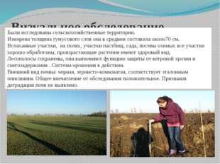 Визуальное обследование. Были исследованы сельскохозяйственные территории. Из