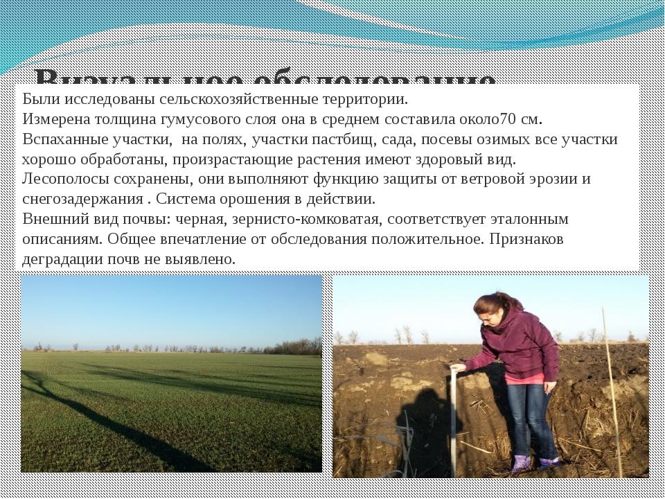 Визуальное обследование. Были исследованы сельскохозяйственные территории. Из...