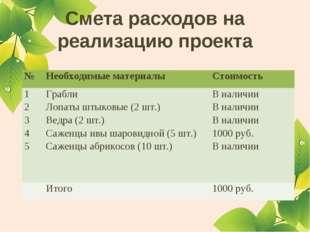Смета расходов на реализацию проекта №Необходимые материалыСтоимость 1 2 3
