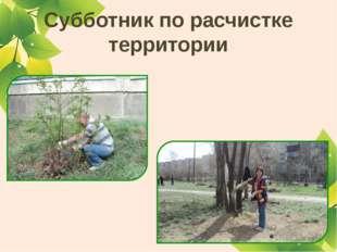 Субботник по расчистке территории