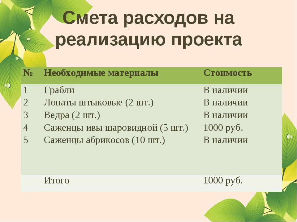 Смета расходов на реализацию проекта №Необходимые материалыСтоимость 1 2 3...