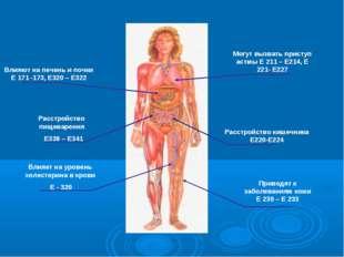 Расстройство кишечника Е220-Е224 Расстройство пищеварения Е338 – Е341 Влияют
