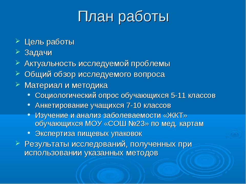 План работы Цель работы Задачи Актуальность исследуемой проблемы Общий обзор...