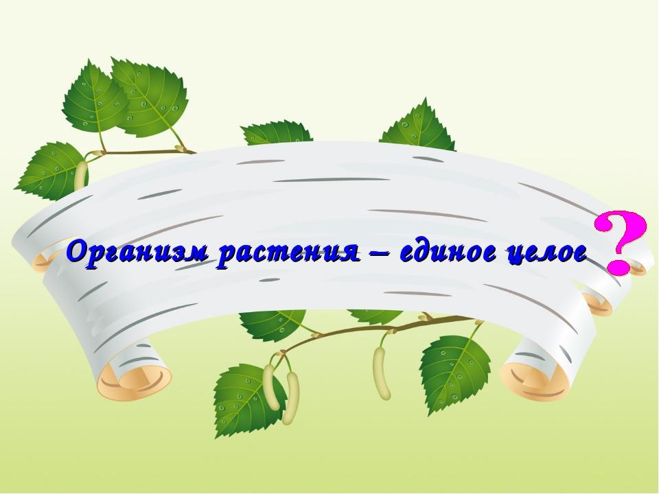 Организм растения – единое целое