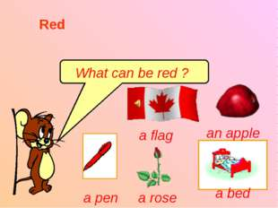 What can be red ? Red a flag an apple a pen a rose a bed