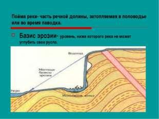 Пойма реки- часть речной долины, затопляемая в половодье или во время паводка