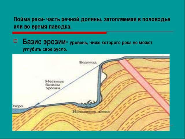 Пойма реки- часть речной долины, затопляемая в половодье или во время паводка...