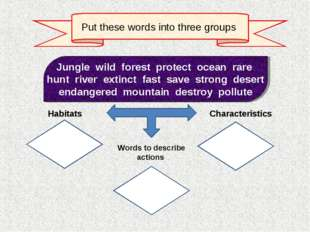 Put these words into three groups Jungle wild forest protect ocean rare hunt