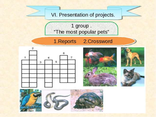 "VI. Presentation of projects. 1 group . ""The most popular pets"" 1.Reports 2.C..."