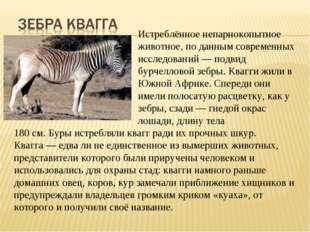 Истреблённоенепарнокопытное животное, по данным современных исс