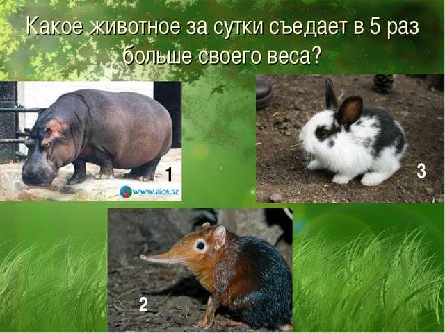 Какое животное за сутки съедает в 5 раз больше своего веса? 1 2 3