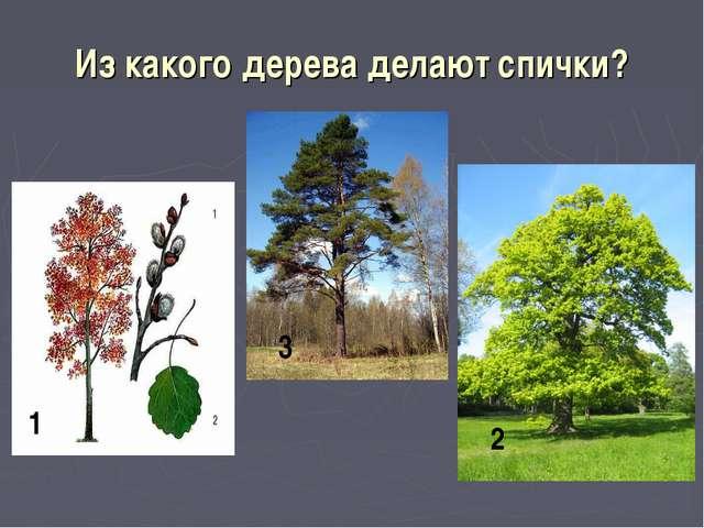 Из какого дерева делают спички? 1 2 3