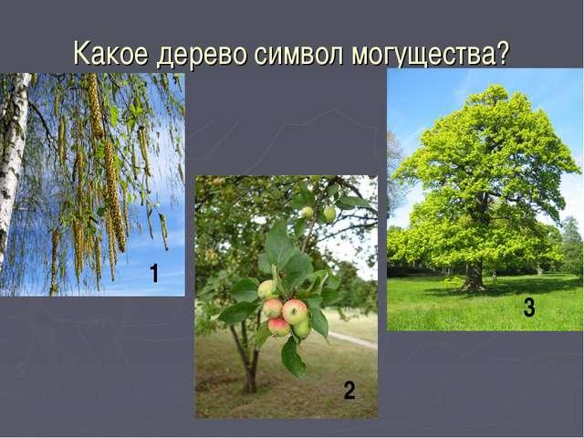 Какое дерево символ могущества? 1 2 3