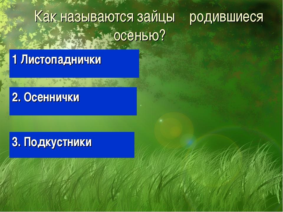 Как называются зайцы родившиеся осенью? 1 Листопаднички 2. Осеннички 3. Подк...