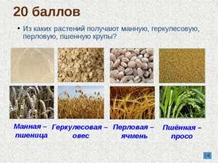 Из каких растений получают манную, геркулесовую, перловую, пшенную крупы? 20