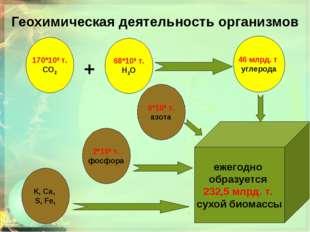 Геохимическая деятельность организмов ежегодно образуется 232,5 млрд. т. сухо