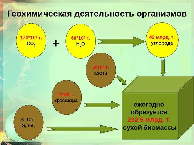 Геохимическая деятельность организмов ежегодно образуется 232,5 млрд. т. сухо...