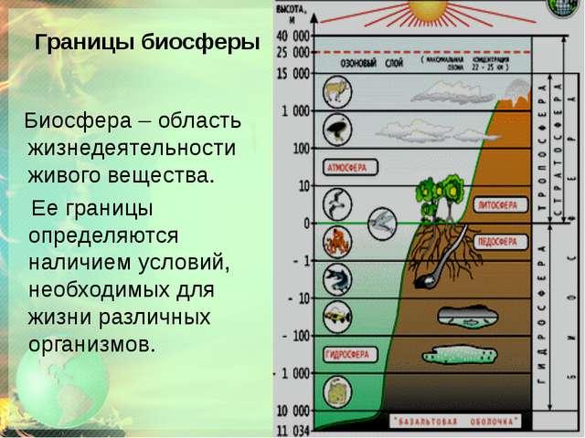Границы биосферы Биосфера – область жизнедеятельности живого вещества. Ее гра...