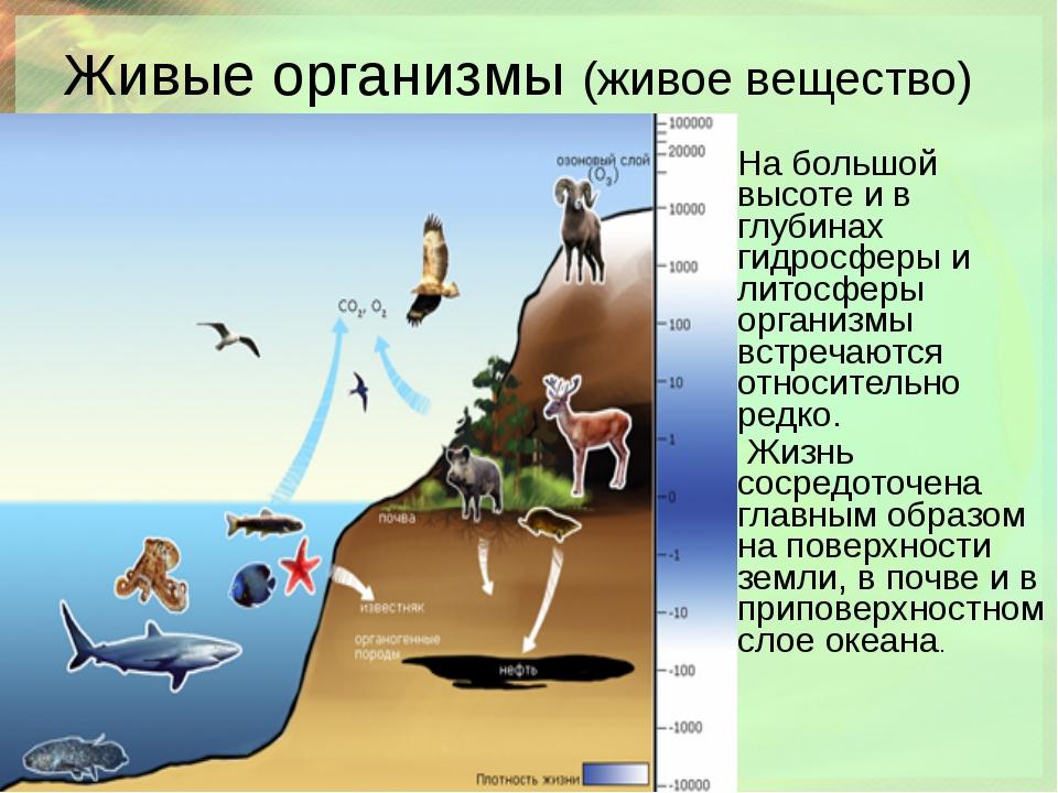 Живые организмы (живое вещество) На большой высоте и в глубинах гидросферы и...
