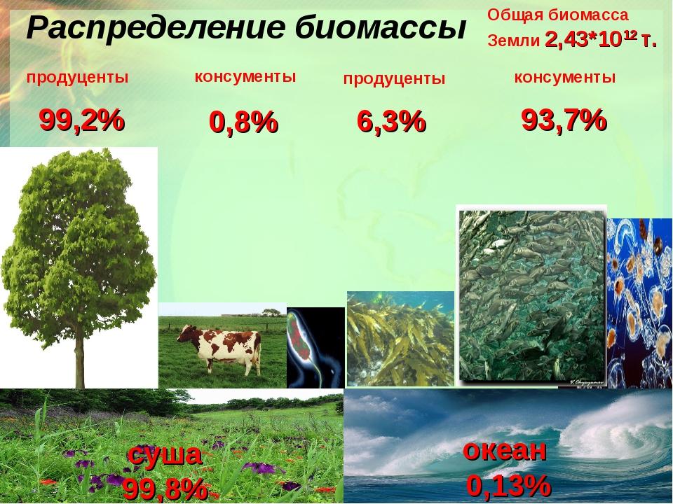 Распределение биомассы Общая биомасса Земли 2,43*1012 т. суша 99,8% океан 0,1...