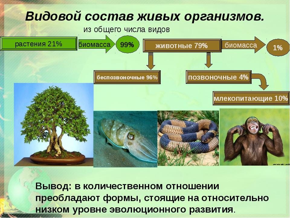 Видовой состав живых организмов. из общего числа видов растения 21% животные...