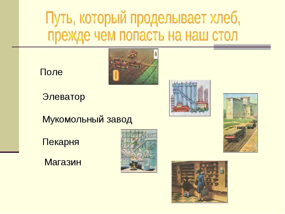 Поле Элеватор Мукомольный завод Пекарня Магазин