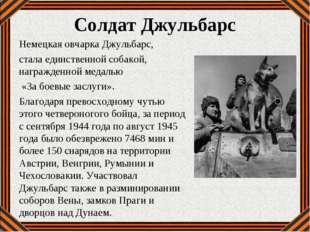 Солдат Джульбарс Немецкая овчарка Джульбарс, стала единственной собакой, нагр