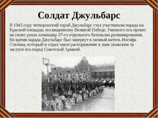 В 1945 году четвероногий герой Джульбарс стал участником парада на Красной пл