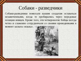 Собаки - разведчики Собаки-разведчики помогали нашим солдатам оставаться неза