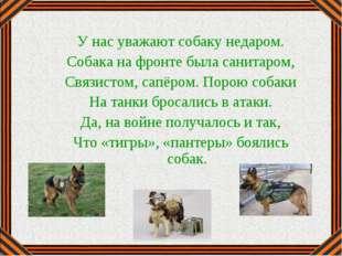 У нас уважают собаку недаром. Собака на фронте была санитаром, Связистом, сап