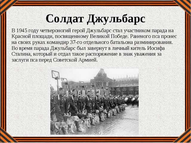 В 1945 году четвероногий герой Джульбарс стал участником парада на Красной пл...