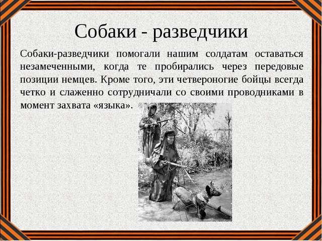 Собаки - разведчики Собаки-разведчики помогали нашим солдатам оставаться неза...