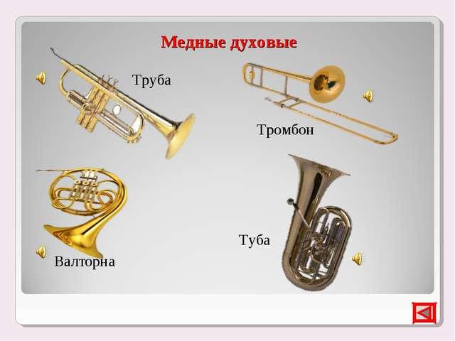 Медные духовые Труба Тромбон Туба Валторна