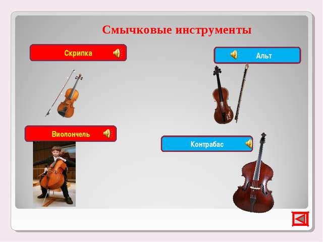 Смычковые инструменты Скрипка Виолончель Альт Контрабас