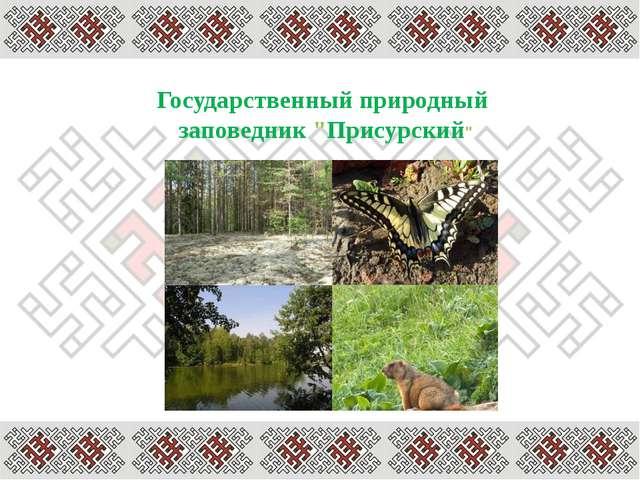 Герои и участники Великой Отечественной войны Кариков П.Г Табаков А.П. Кузнец...